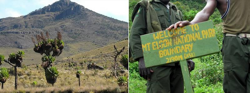 5 days Mount Elgon hiking experience