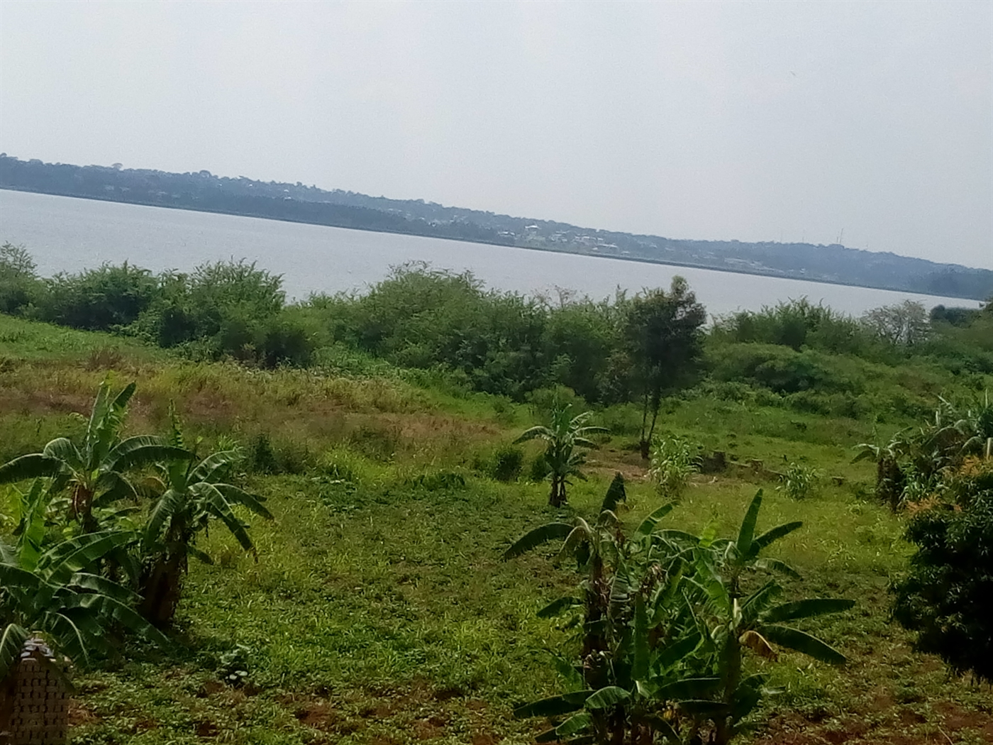 Residential Land for sale in Bugiri Wakiso
