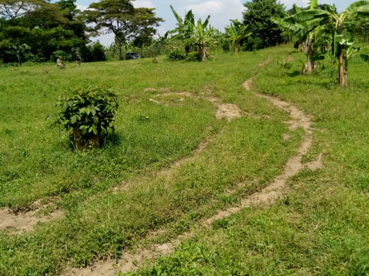 Residential Land for sale in Busaabala Wakiso