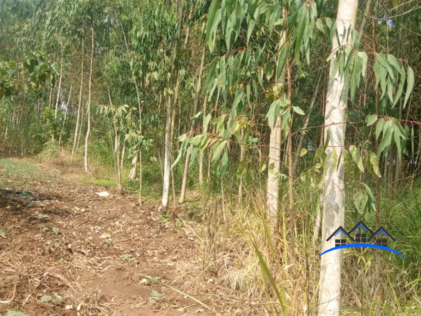 Residential Land for sale in Nakawuka Wakiso