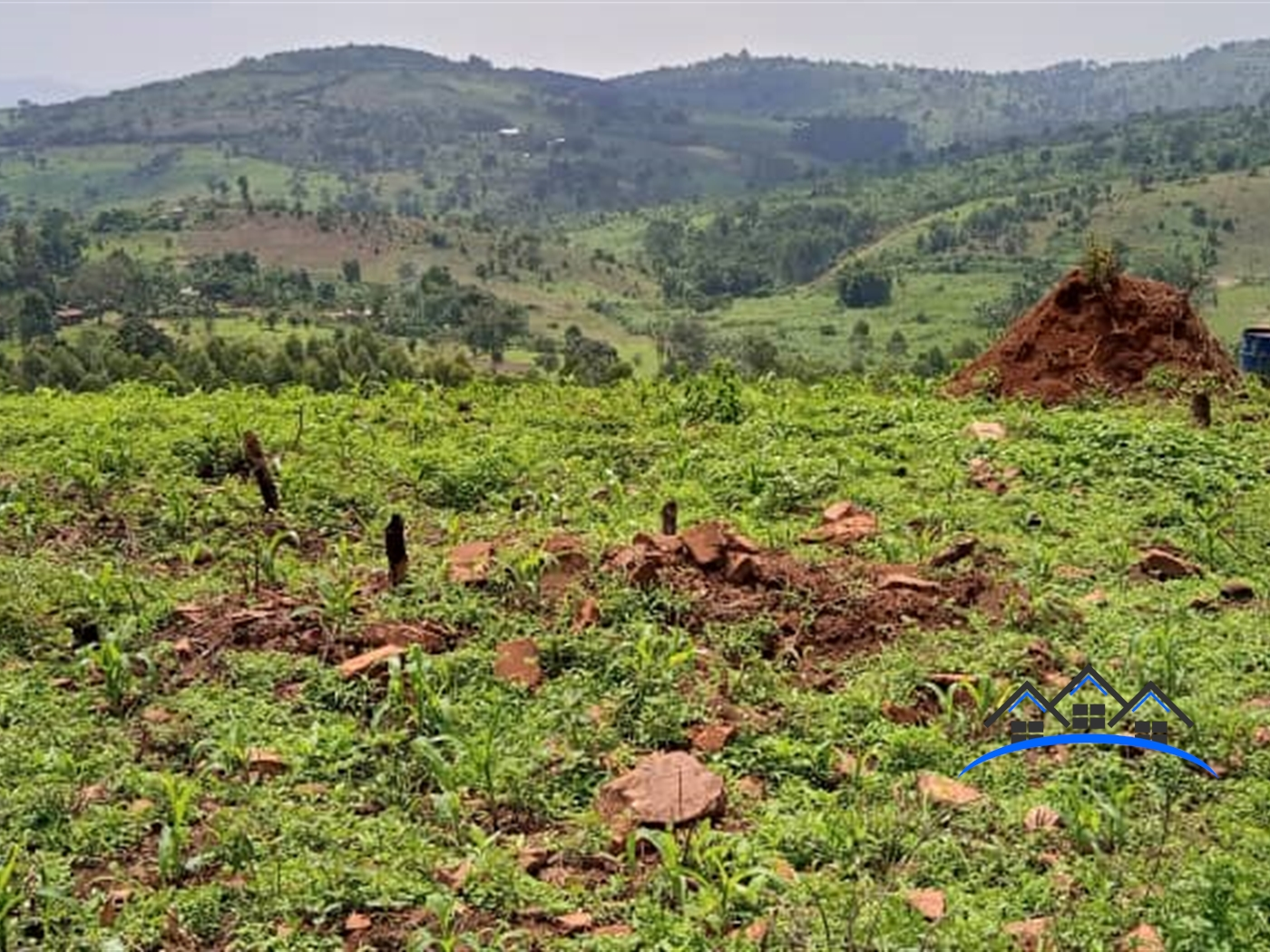 Agricultural Land for sale in Kabule Mityana