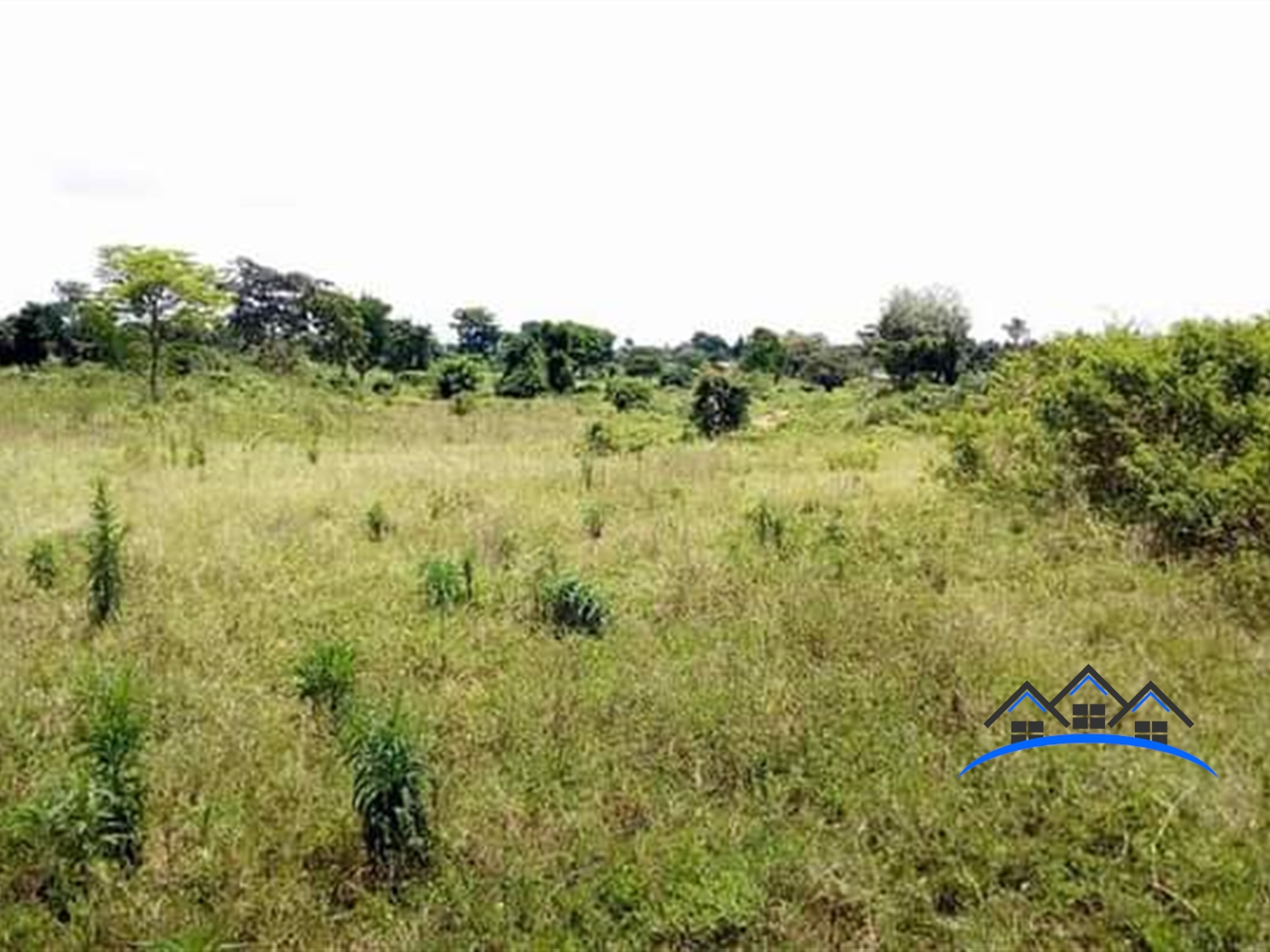 Multi Purpose Land for sale in Lakeside Mayuge
