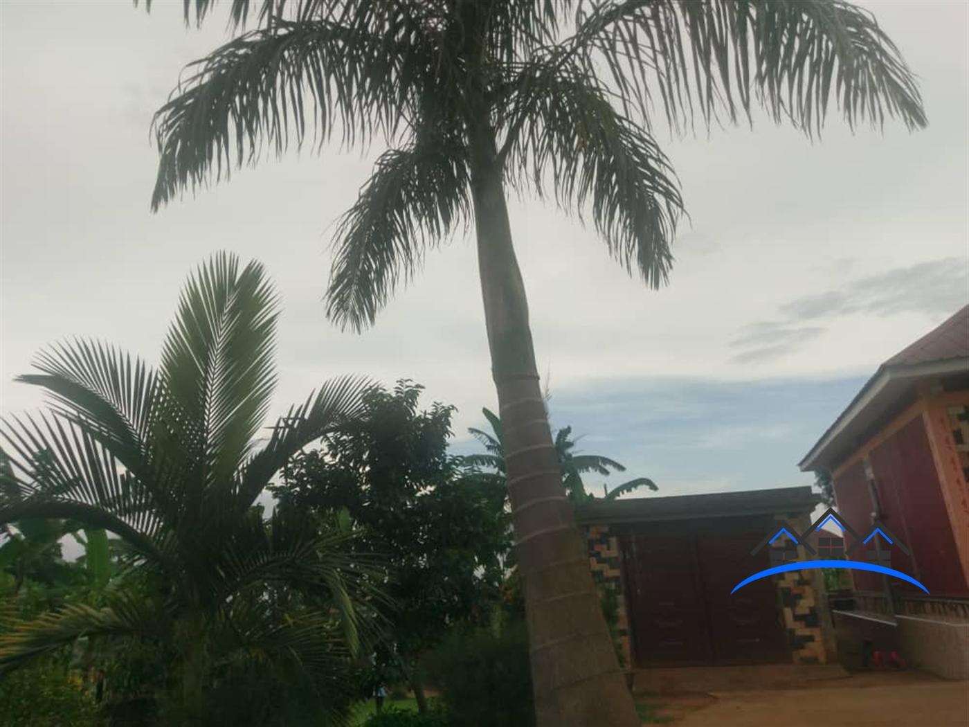 Bungalow for sale in Cbd Mukono