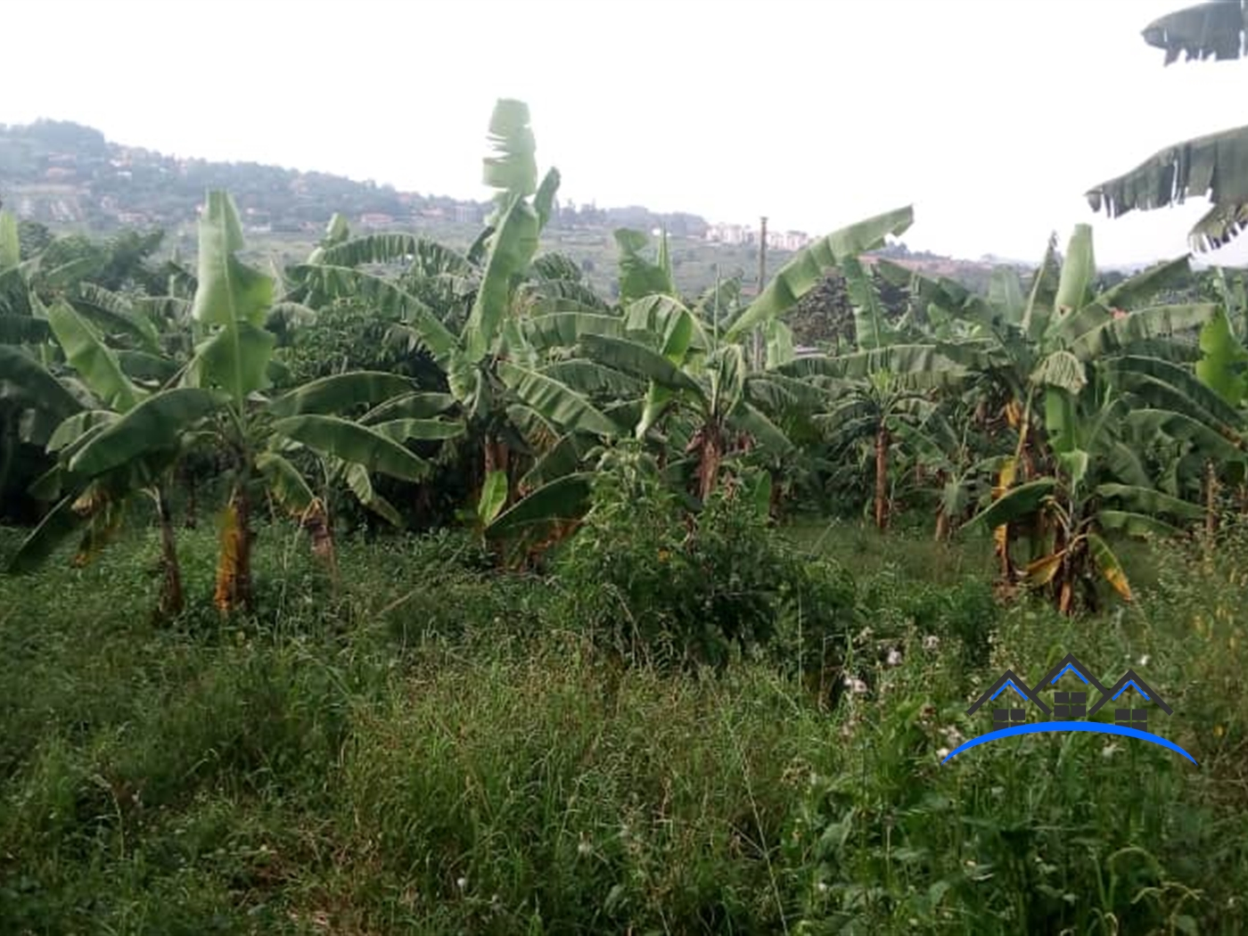 Residential Land for sale in Mutungohill Kampala