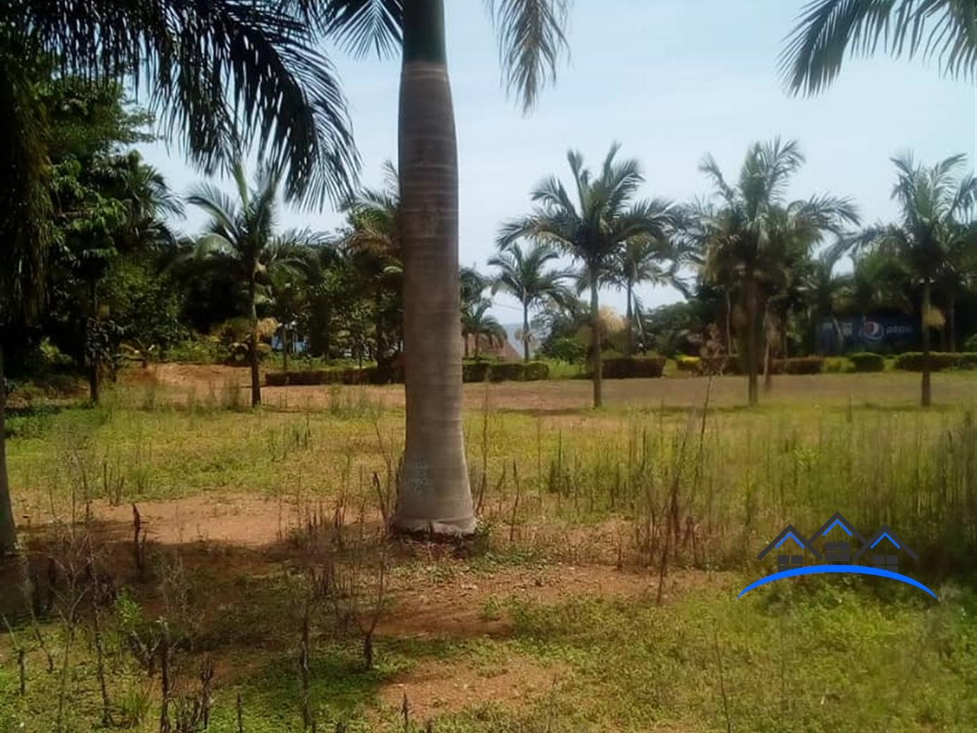 Beach for sale in Bwelenga Wakiso