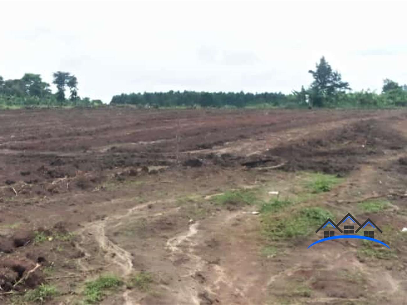 Residential Land for sale in Kikandwe Wakiso