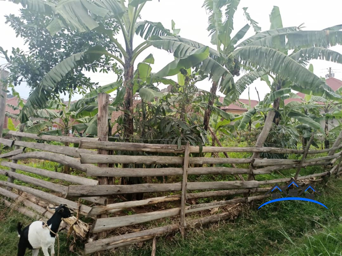 Residential Land for sale in Kabuma Kampala