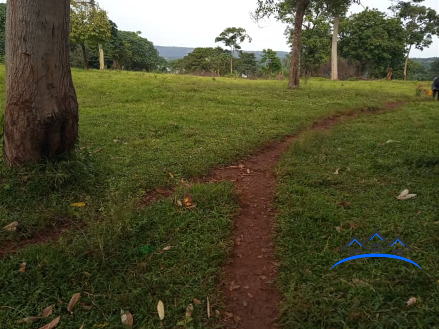 Agricultural Land for sale in Koome Mukono
