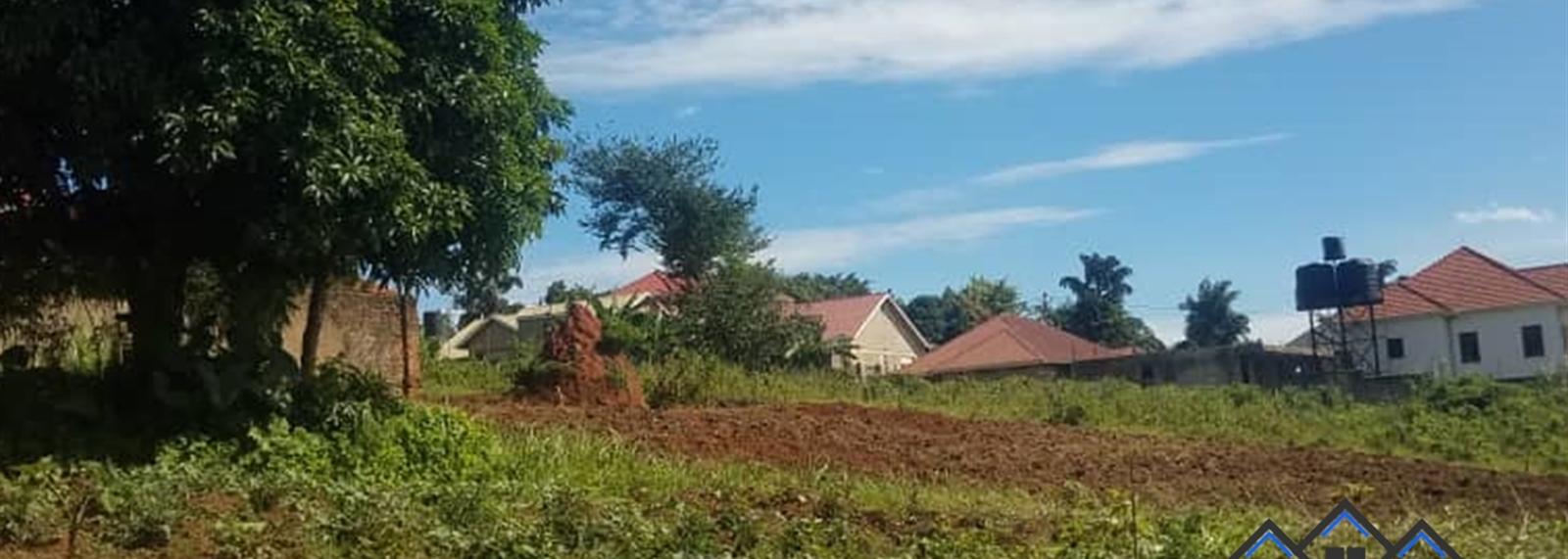 Mbalwa