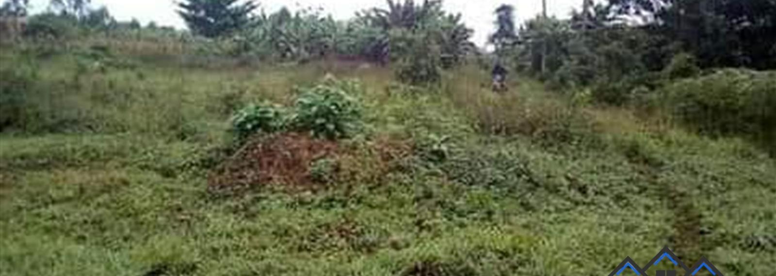 Mukiyungu