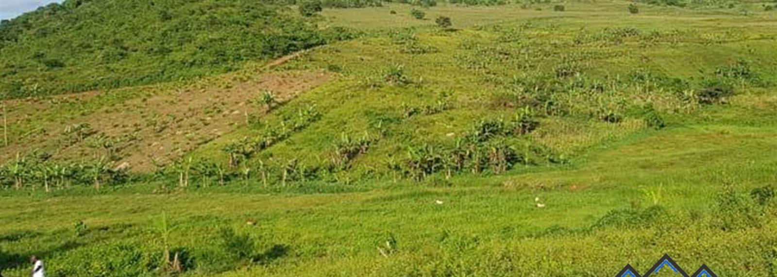 Kiganda