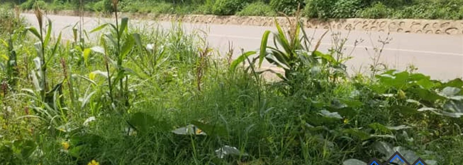 Kyambogo
