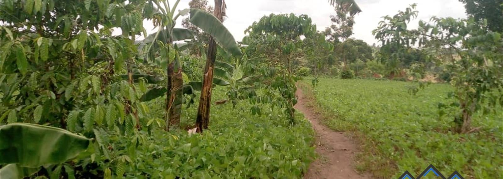 Kanyanda