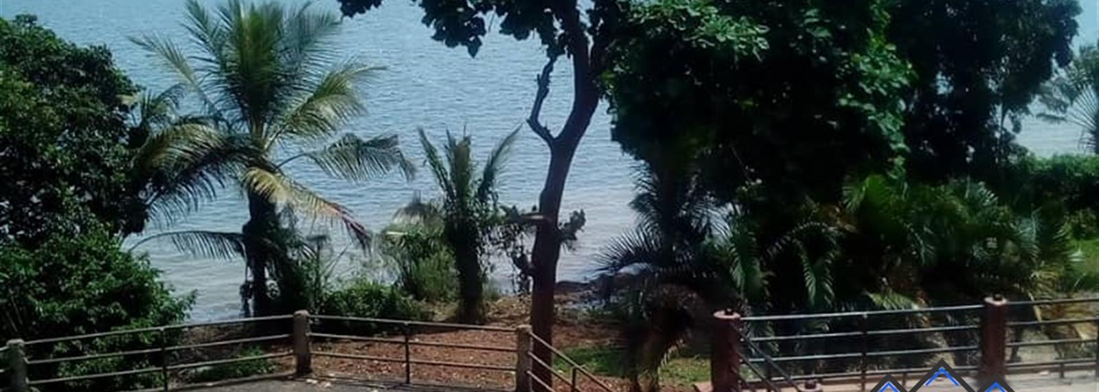 Bwelenga