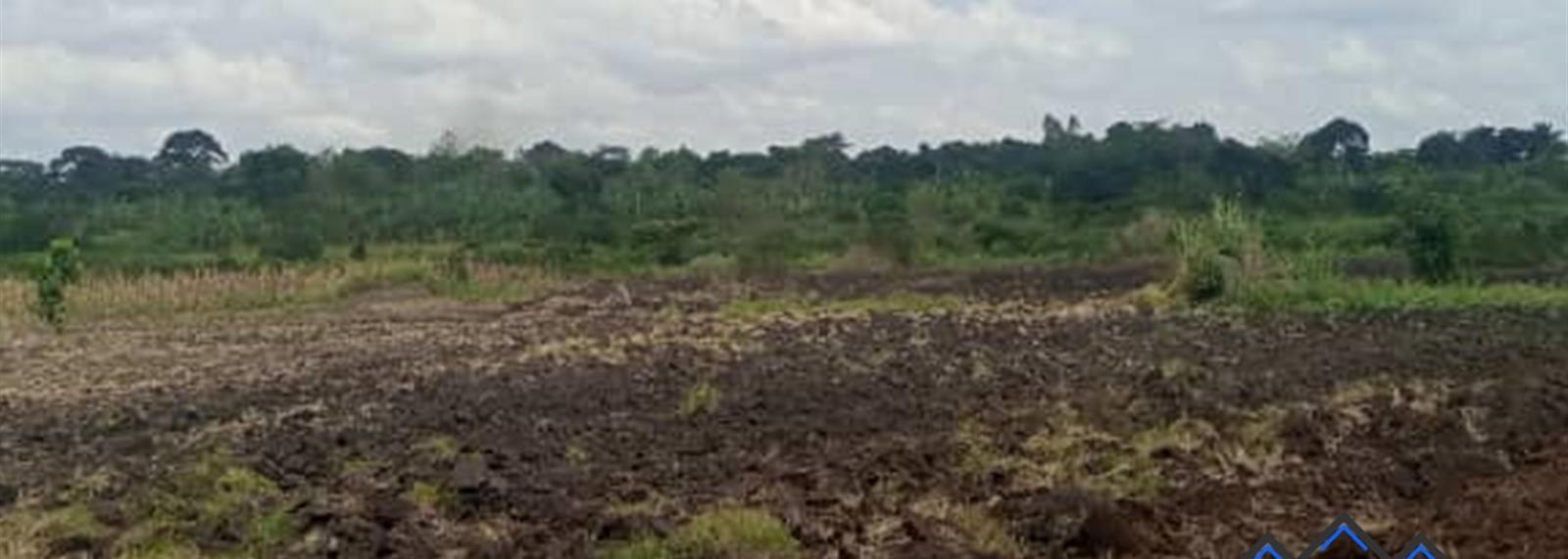 Zirobwe