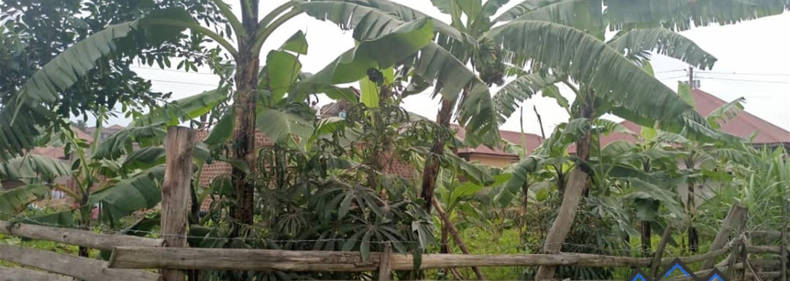 Kabuma