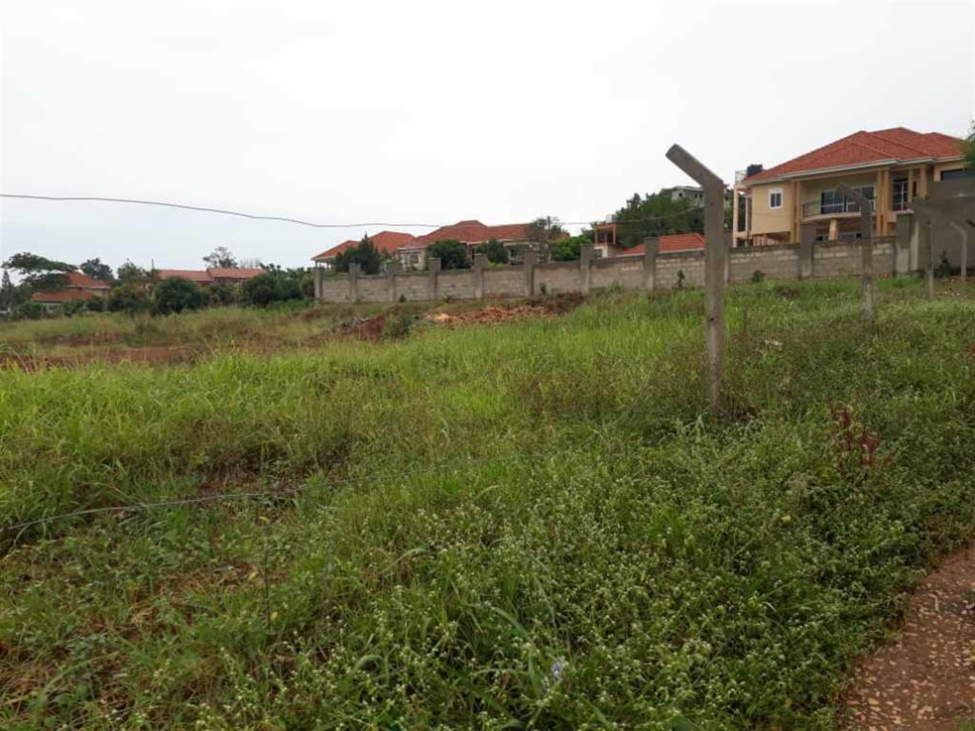 Agricultural Land for rent in Bunga Kampala