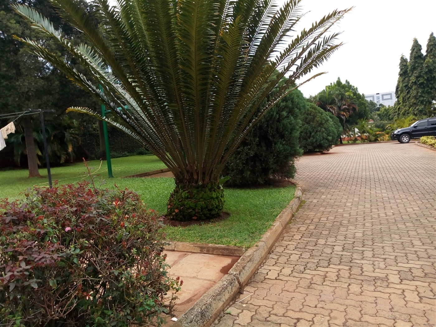 Apartment for rent in Kololo Wakiso