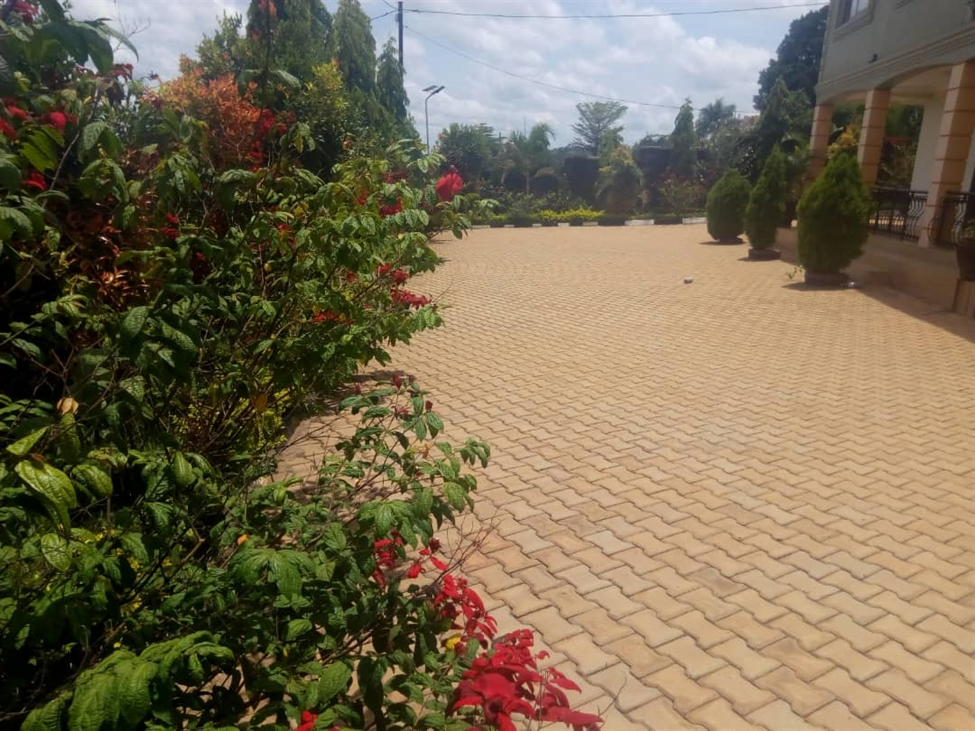 Duplex for rent in Lubowa Wakiso