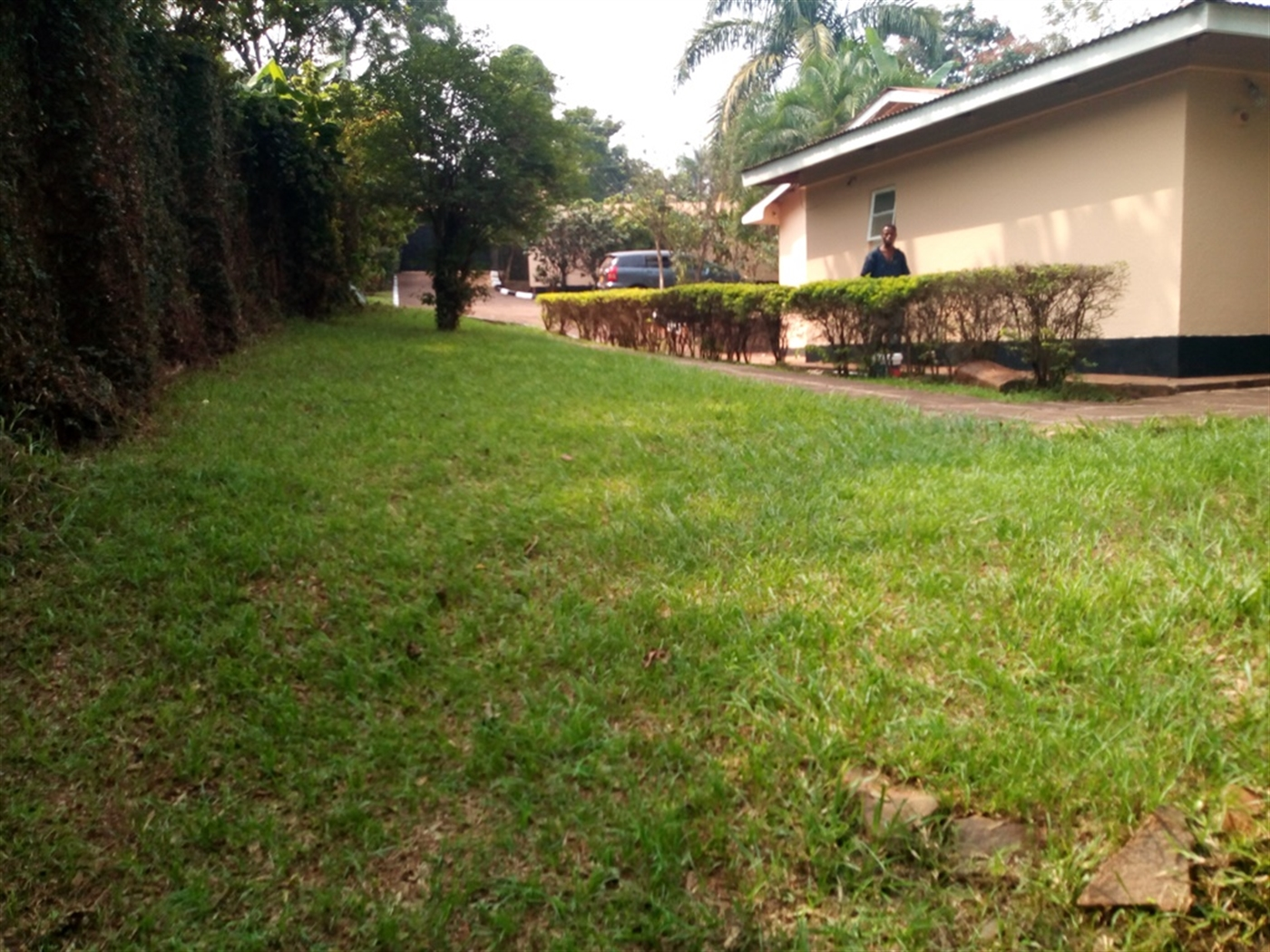 Agricultural Land for rent in Mbuya Kampala