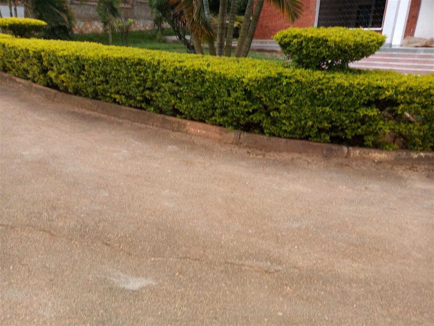 Bungalow for rent in Naguru Kampala