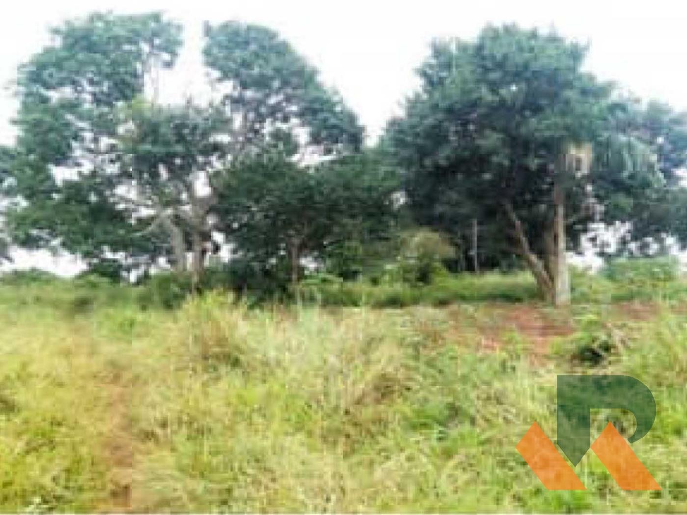 Commercial Land for sale in Kigo Wakiso