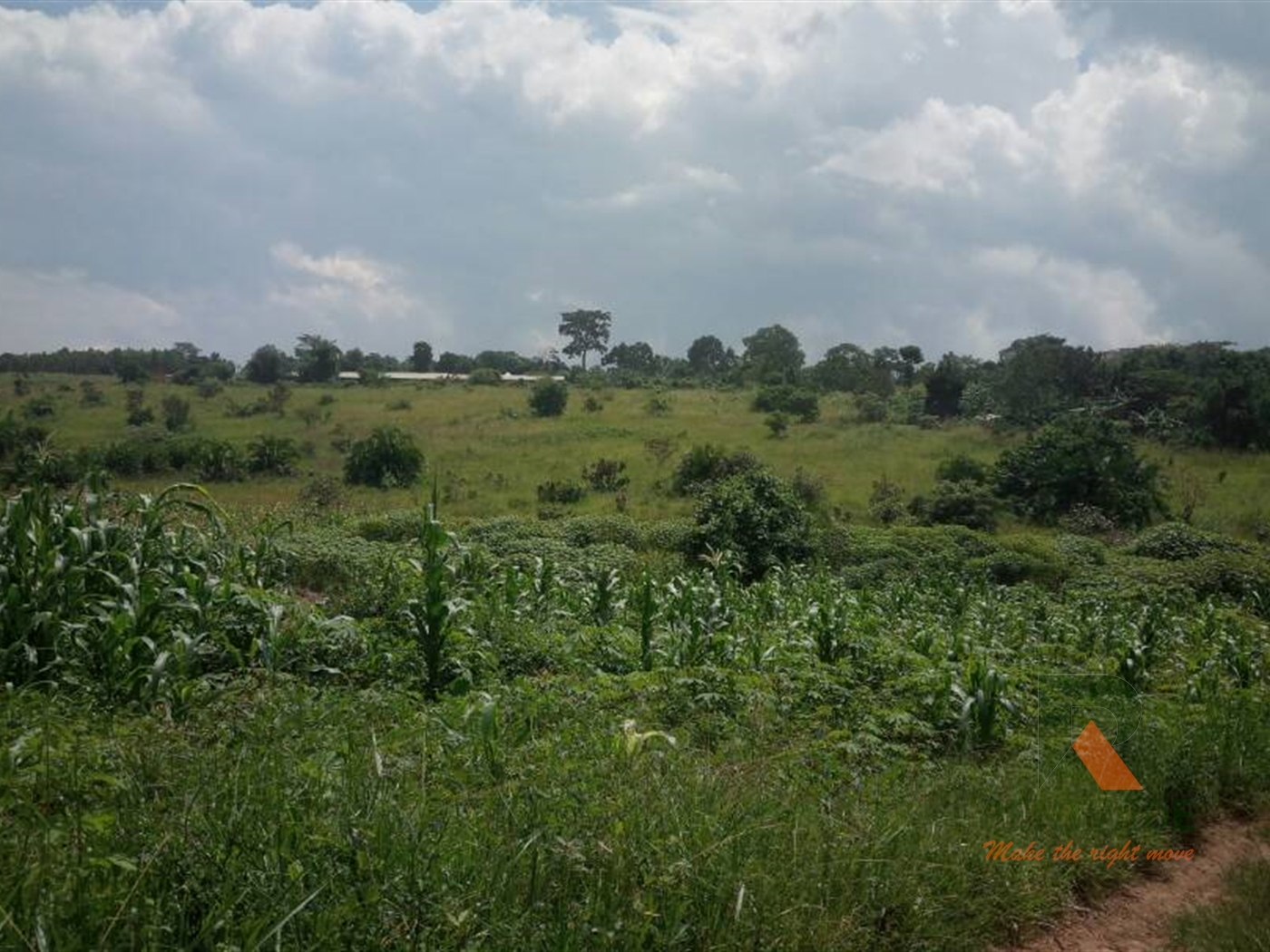 Agricultural Land for sale in Bombo Luwero
