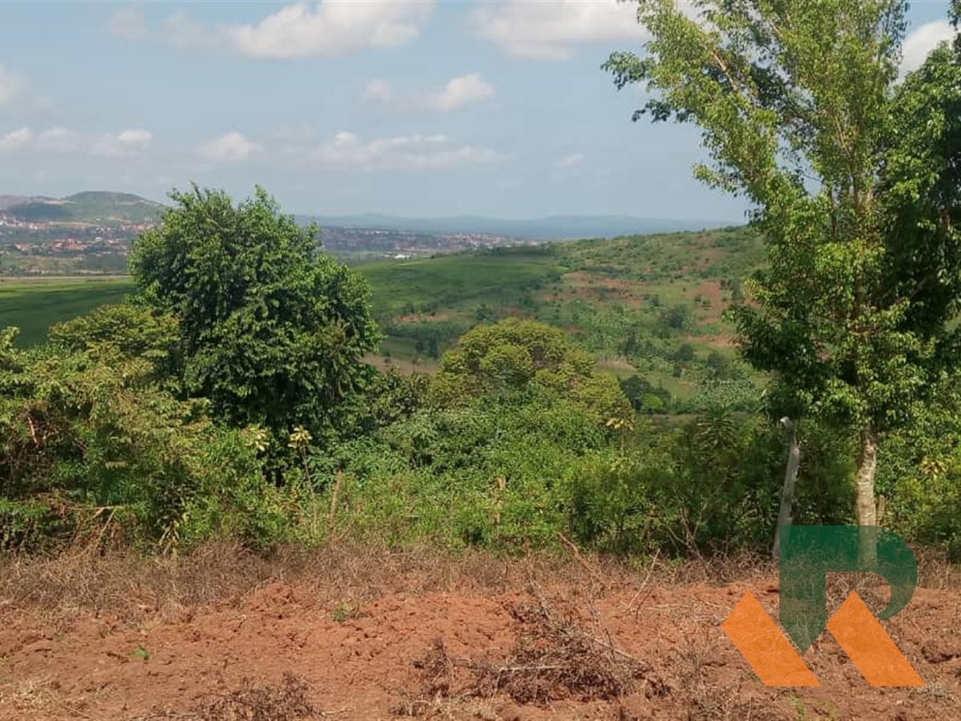 Residential Land for sale in Kasenge Wakiso