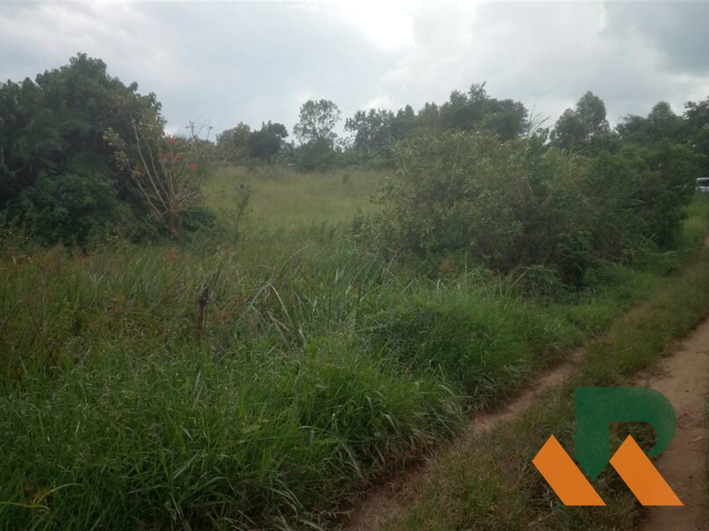 Agricultural Land for sale in Kapeeka Nakaseke