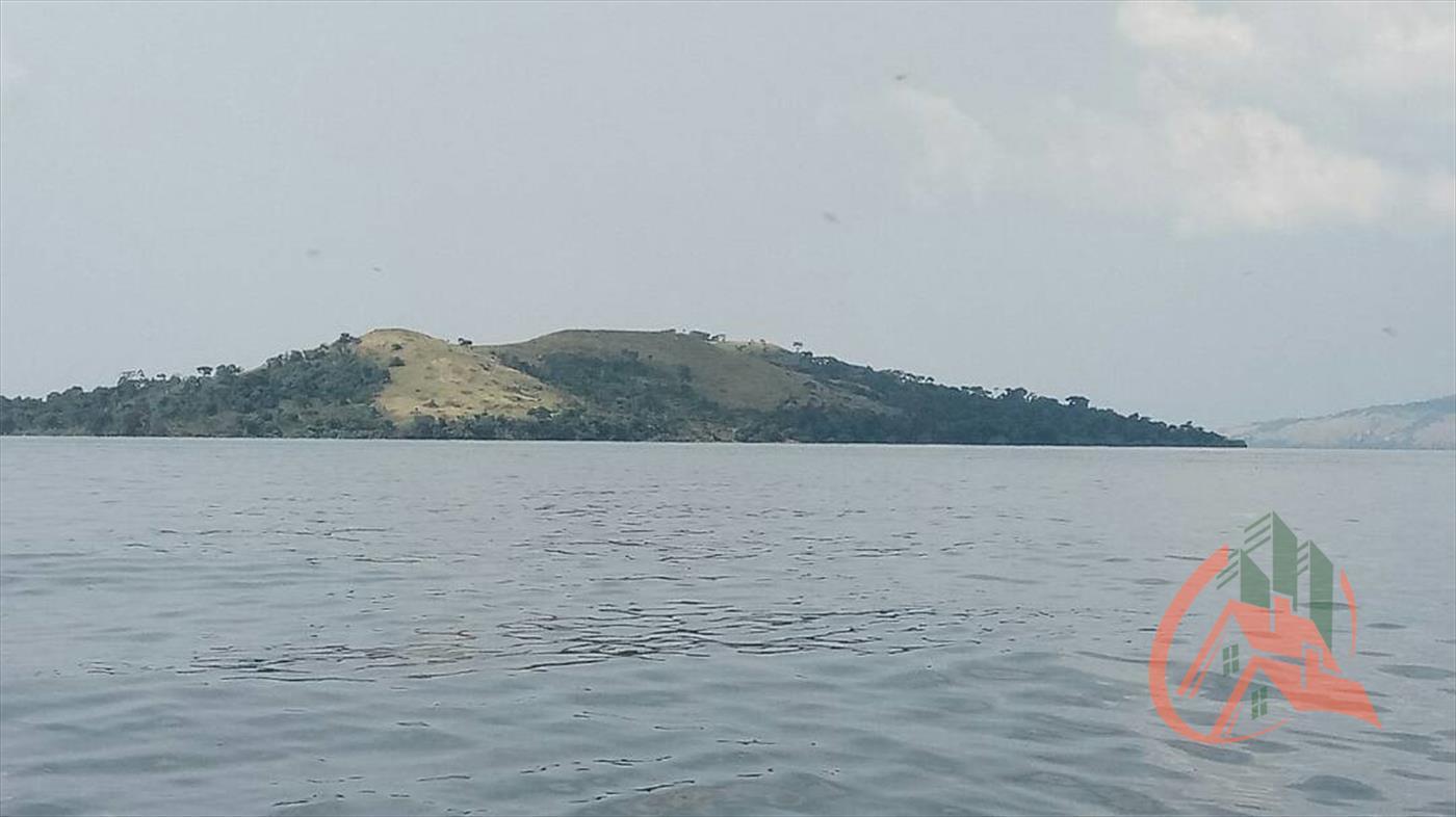 Buvuma