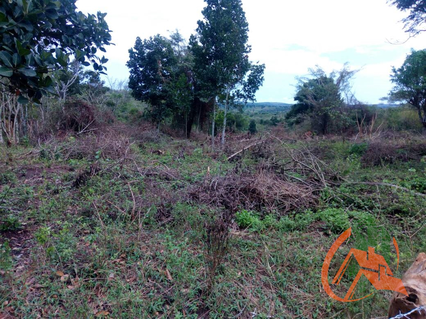 Agricultural Land for sale in Nakifuma Mukono