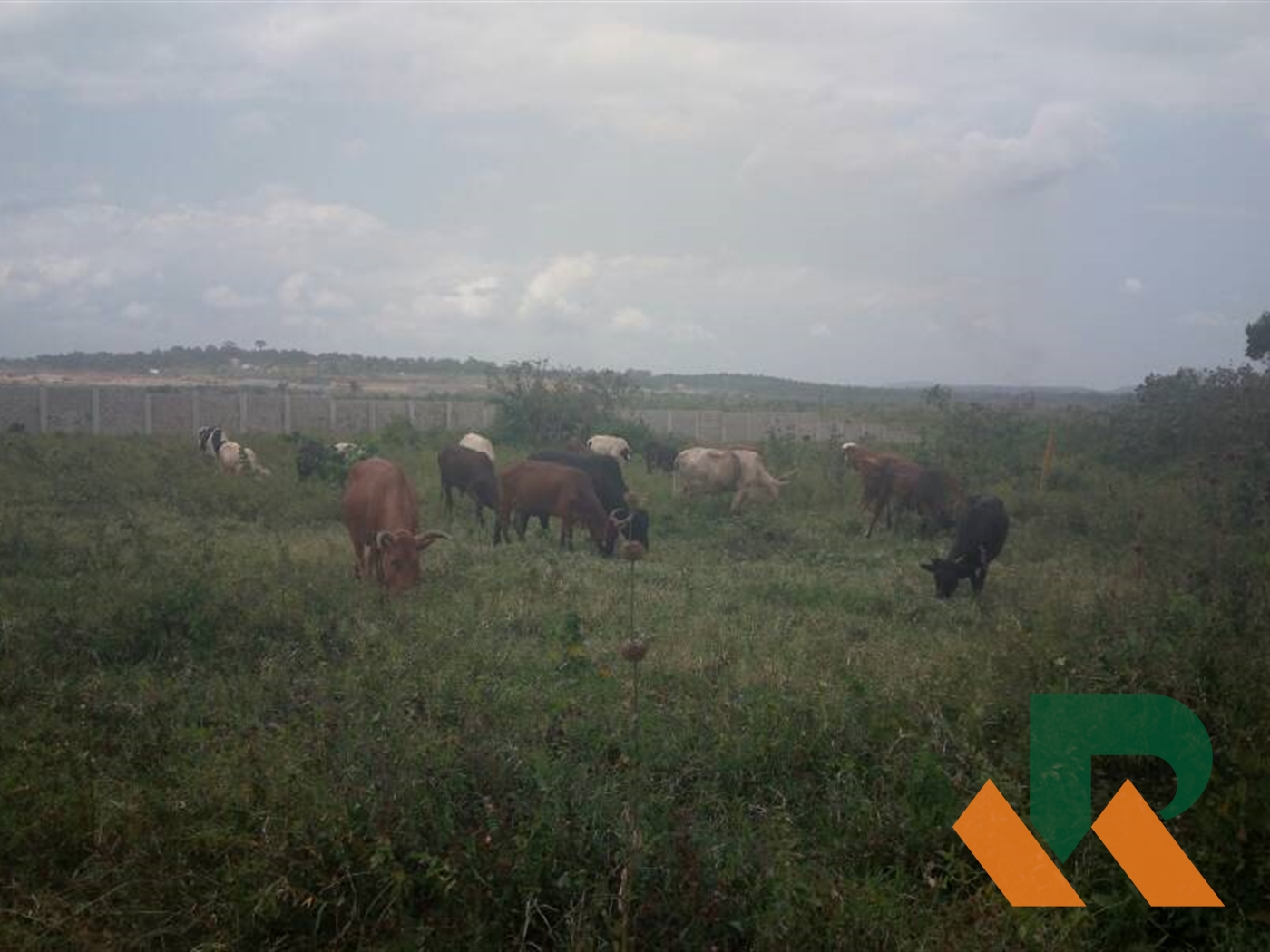 Industrial Land for sale in Namanve Mukono