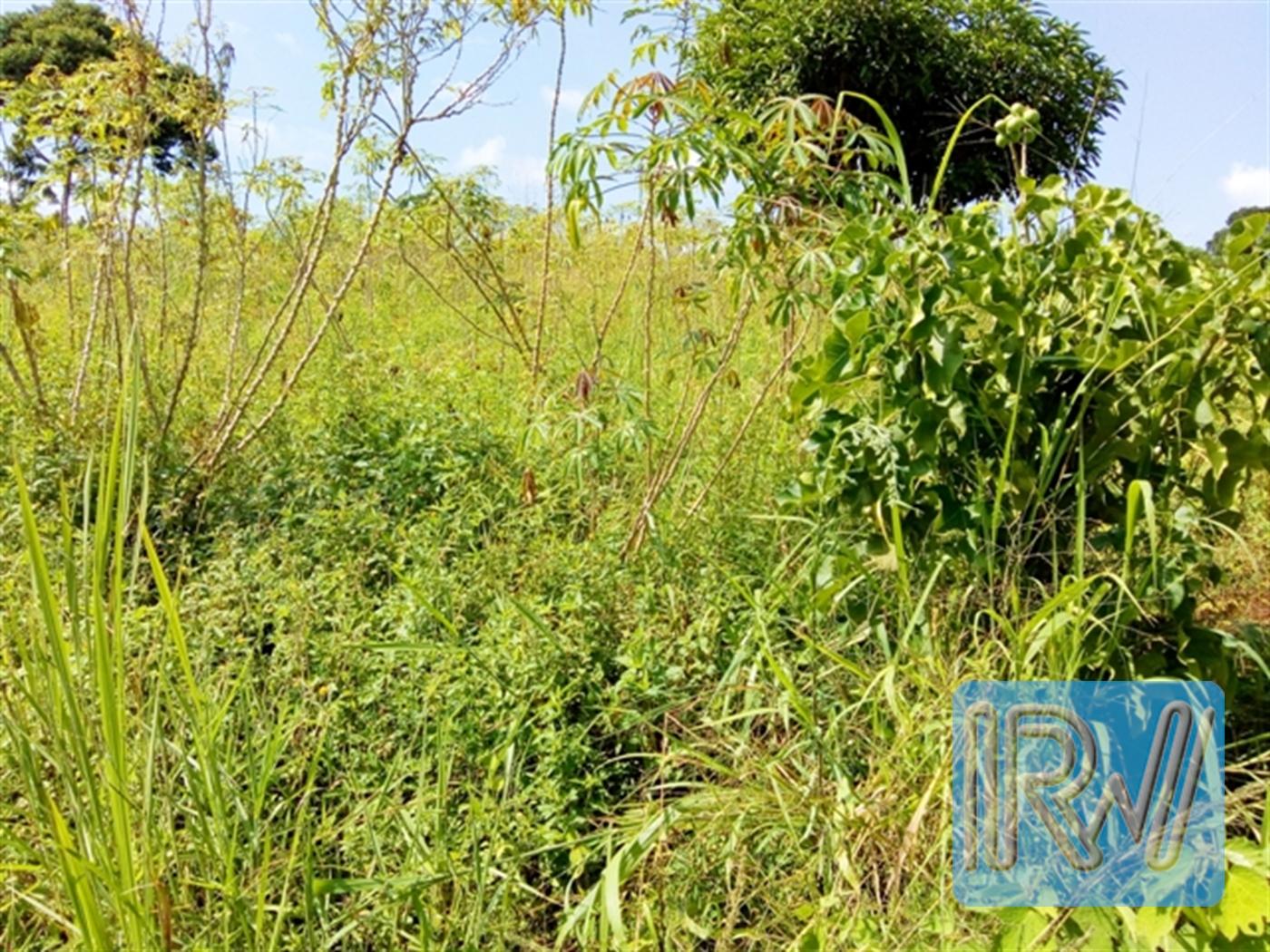 Residential Land for sale in Kasanjje Wakiso