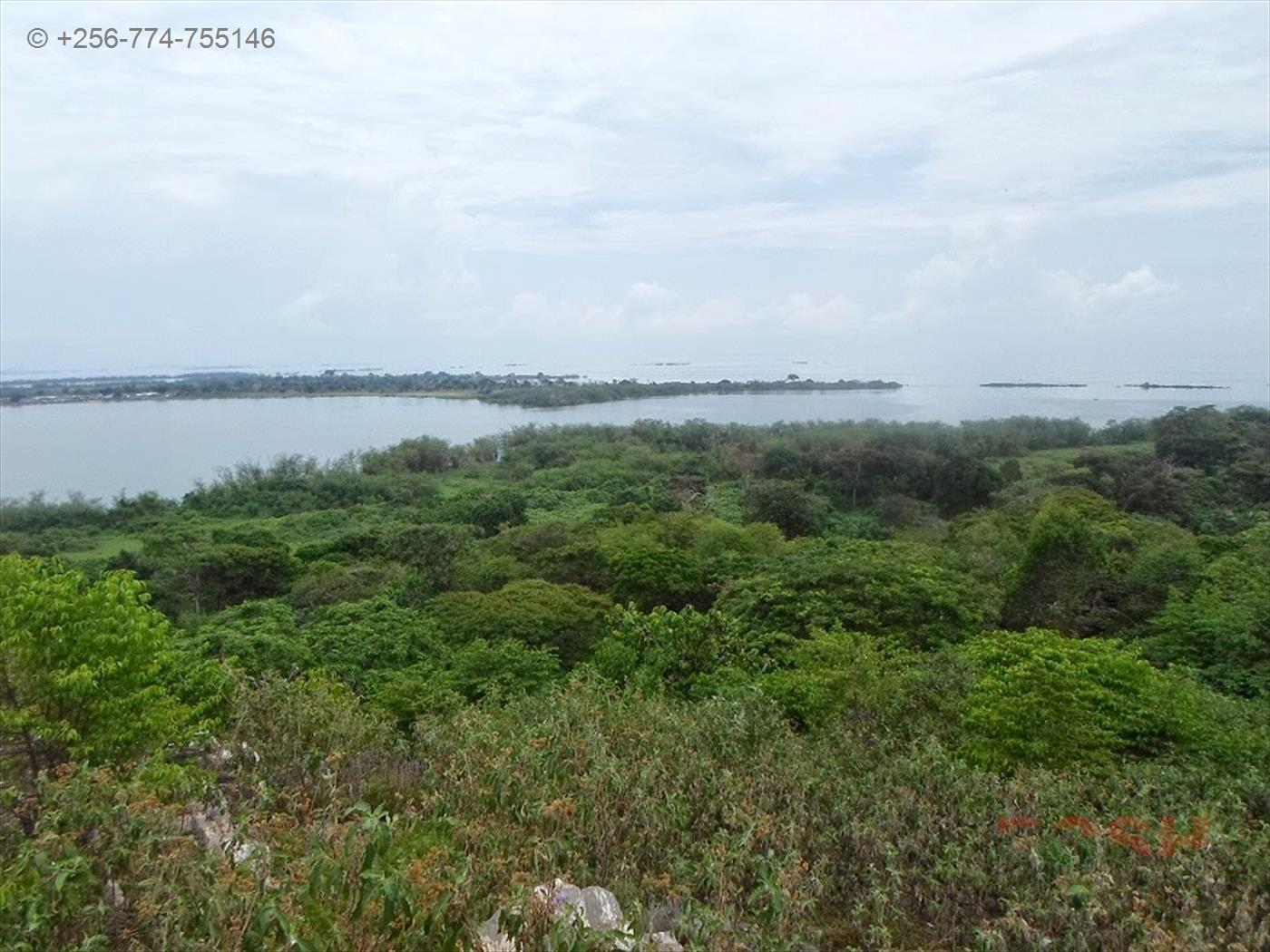 Commercial Land for sale in Nsonga island Wakiso