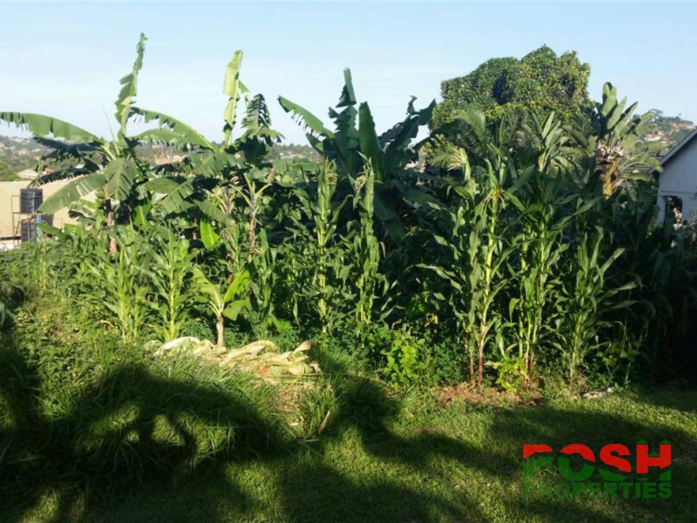 Residential Land for sale in Mpelerwe Wakiso