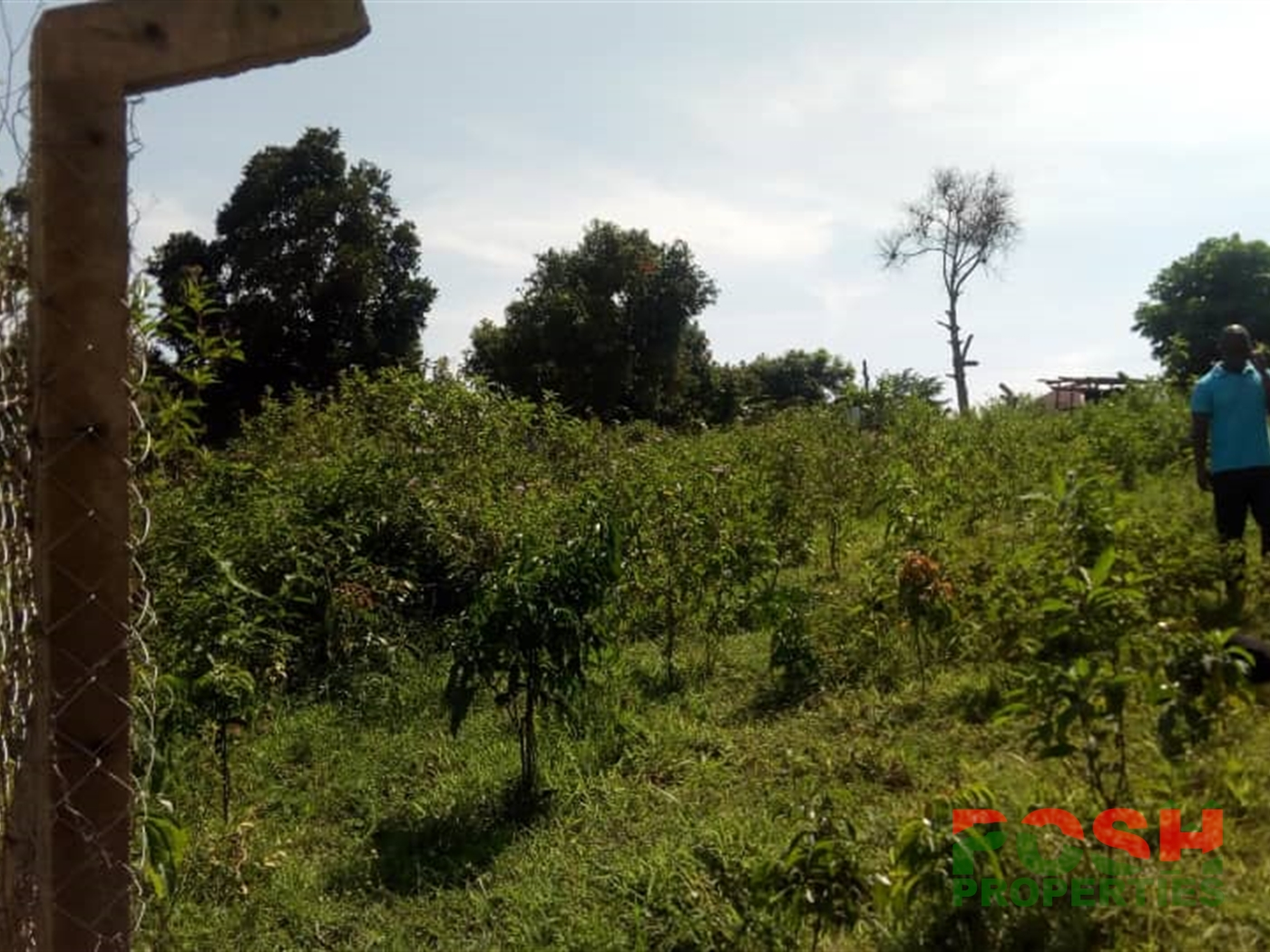 Residential Land for sale in Kasenyi Wakiso