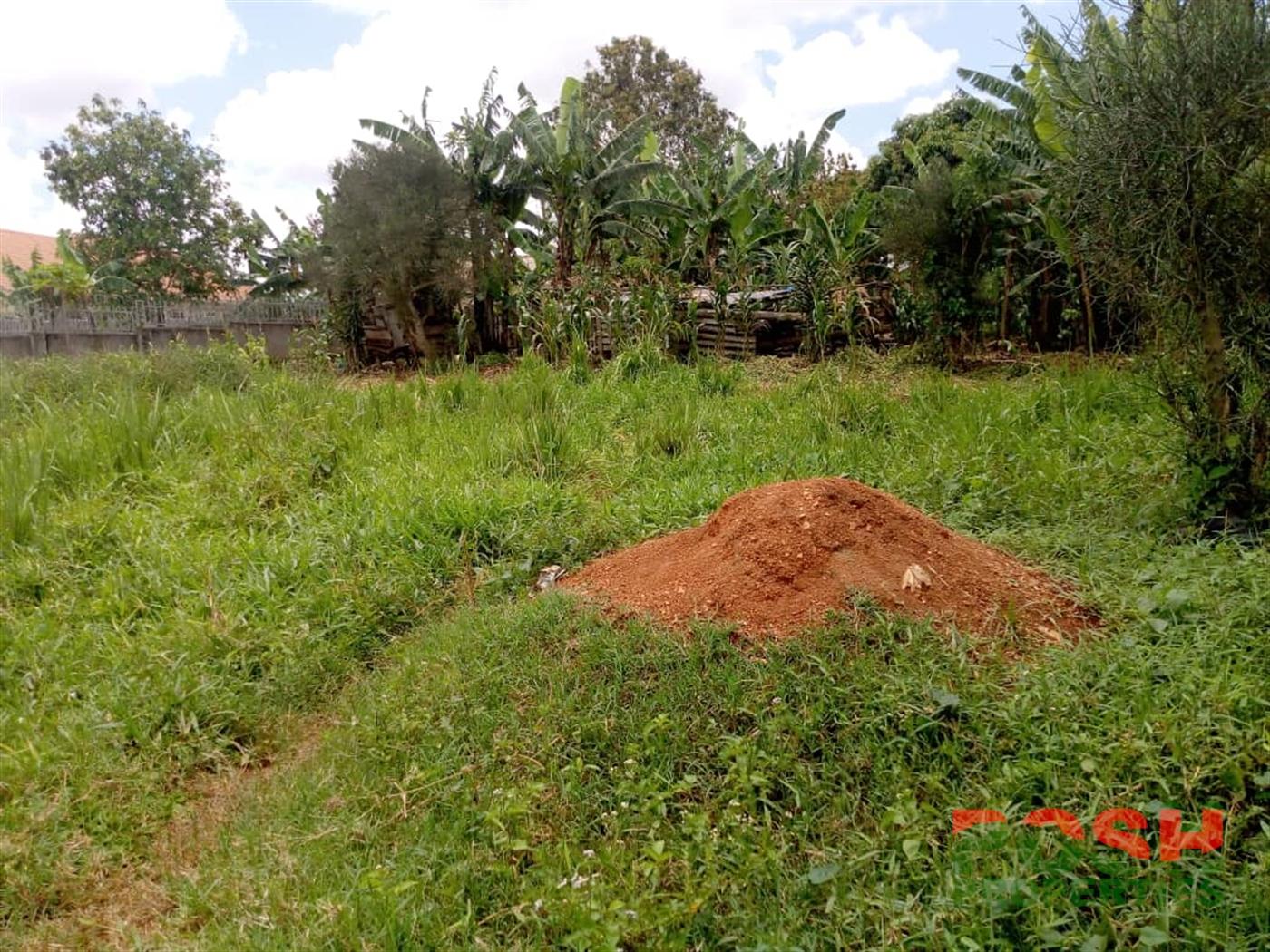 Residential Land for sale in Nasuuti Mukono