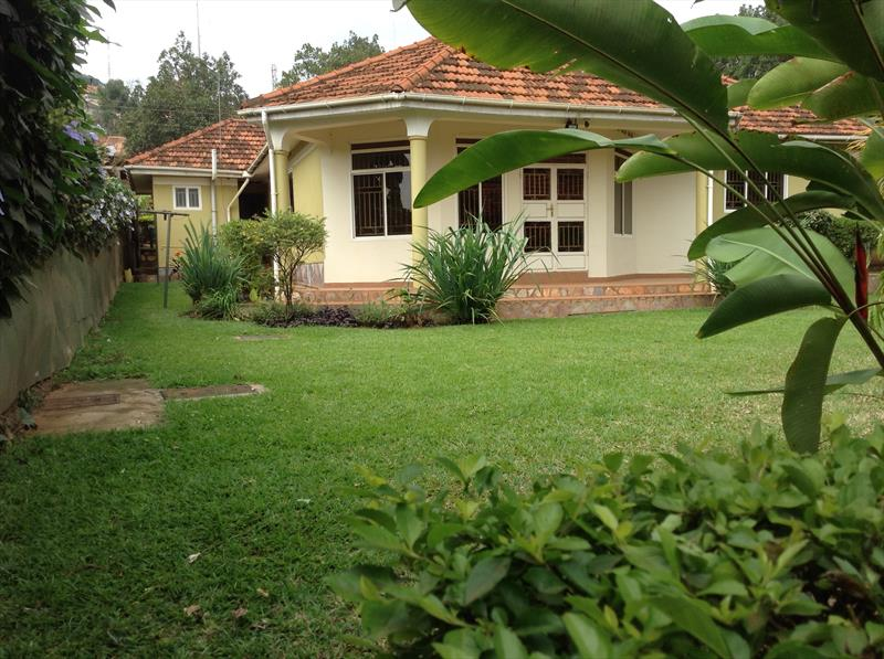 properties for rent kampala