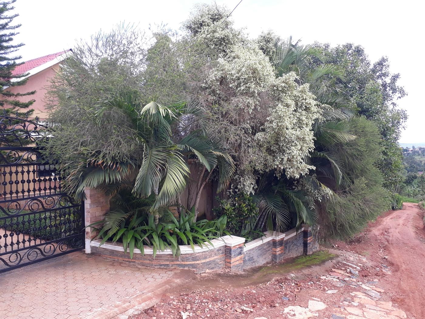 Bungalow for rent in Namilyango Mukono