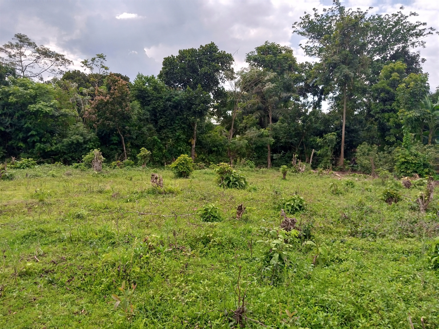 Residential Land for sale in Nsagu Wakiso