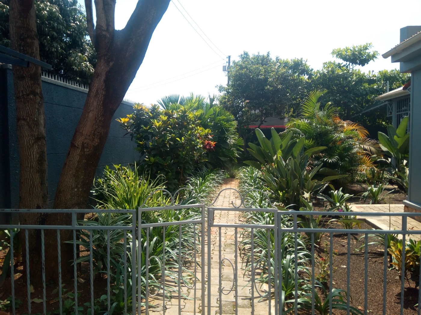 Bungalow for rent in Rubaga Kampala