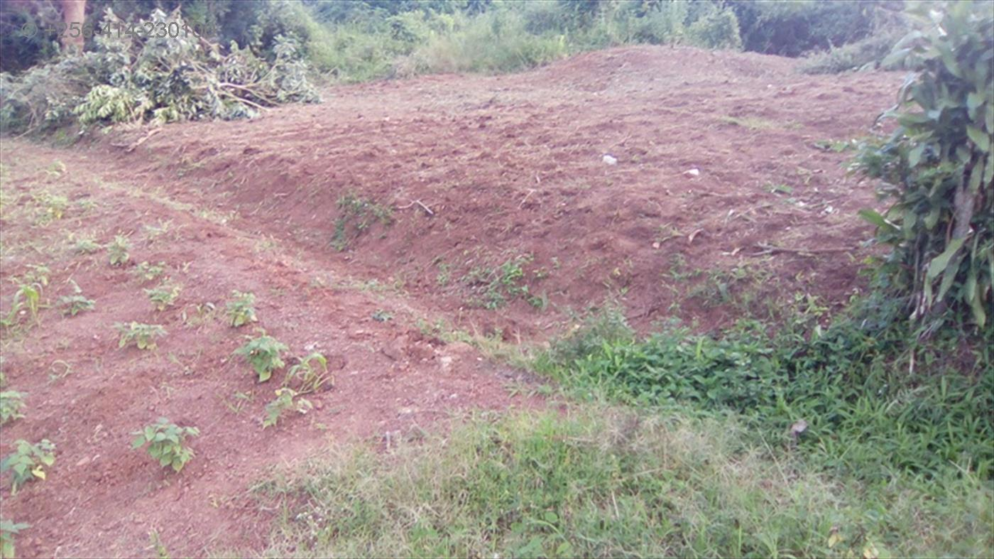 Agricultural Land for sale in Nyenga Jinja