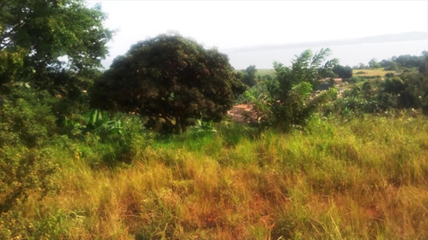 Residential Land for sale in Kanaaba Nakaseke