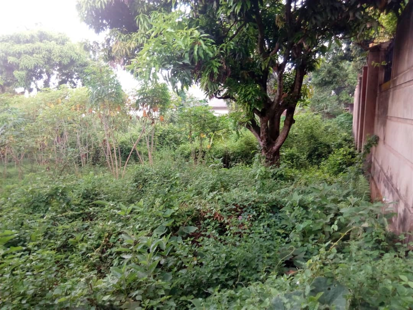 Residential Land for sale in Lamulanda Wakiso