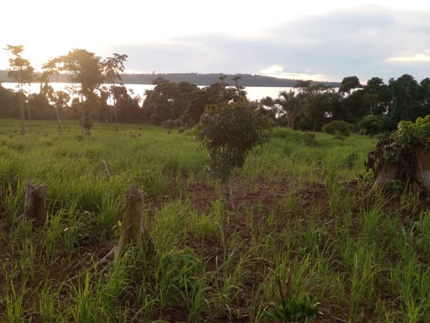 Recreational Land for sale in Kalangala Kalangala
