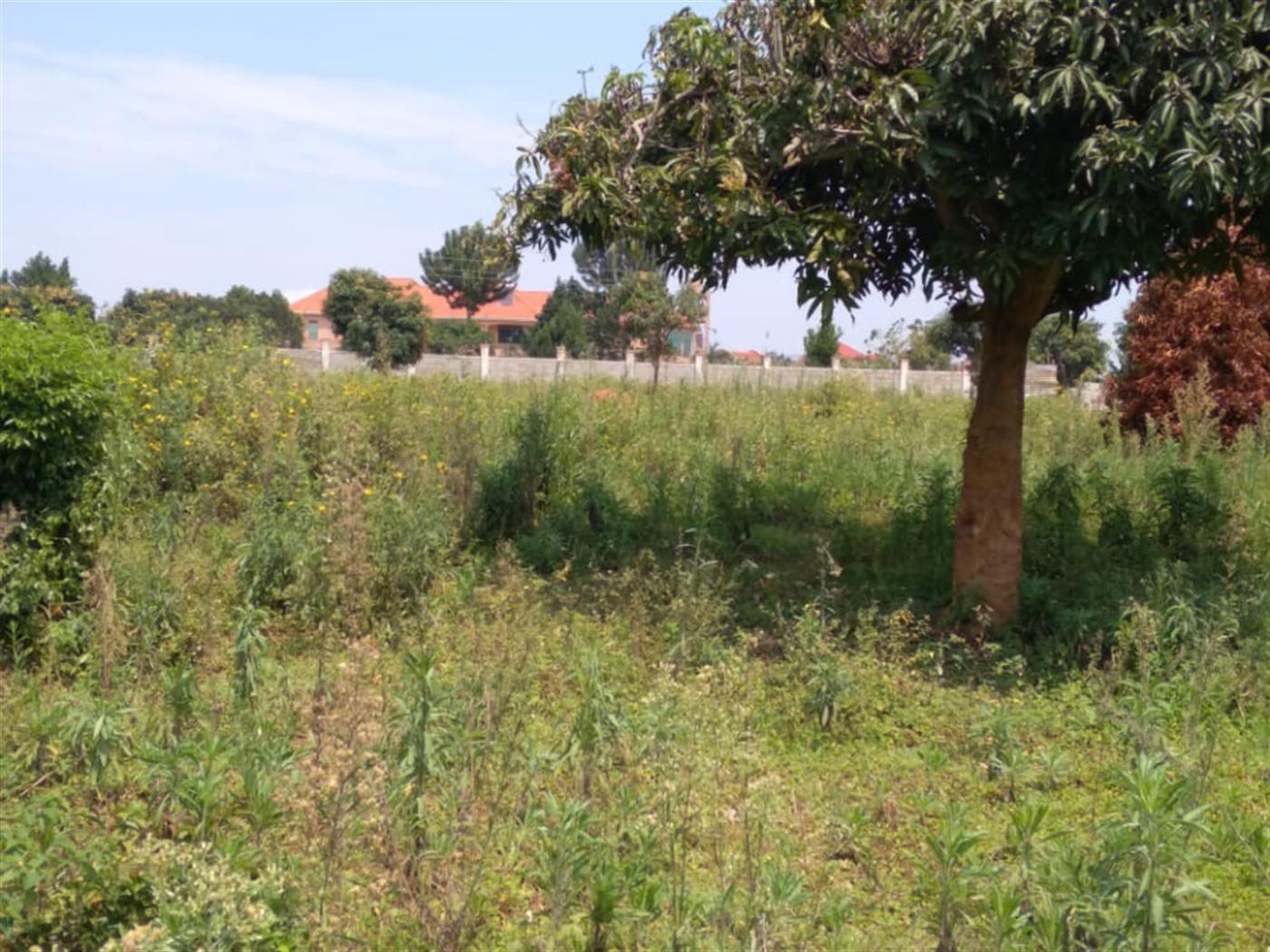 Residential Land for sale in Kajansi Wakiso