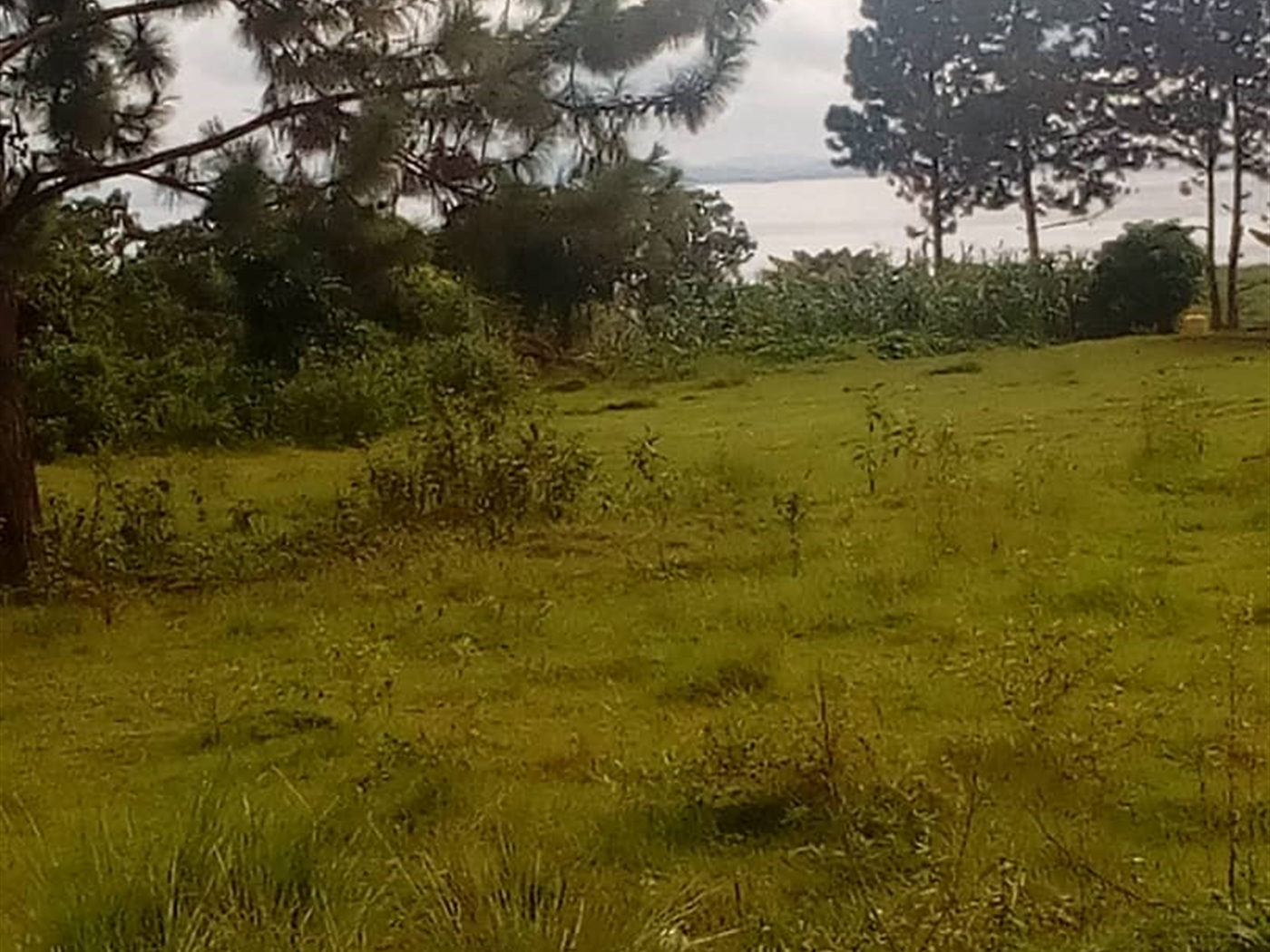Multipurpose Land for sale in Bugiribukasa Wakiso