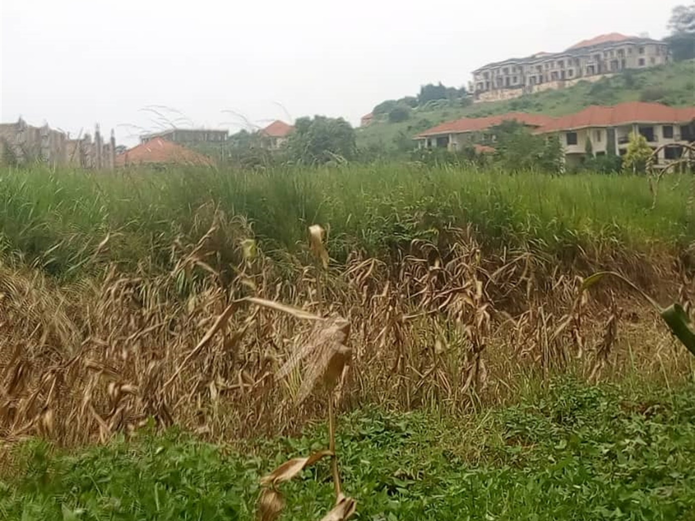 Agricultural Land for sale in Lubowa Wakiso