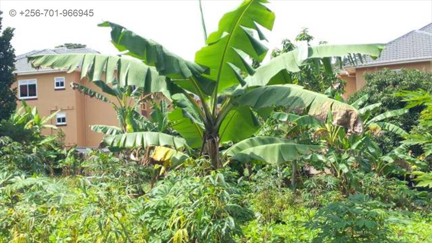 Multi Purpose Land for sale in Akright Wakiso