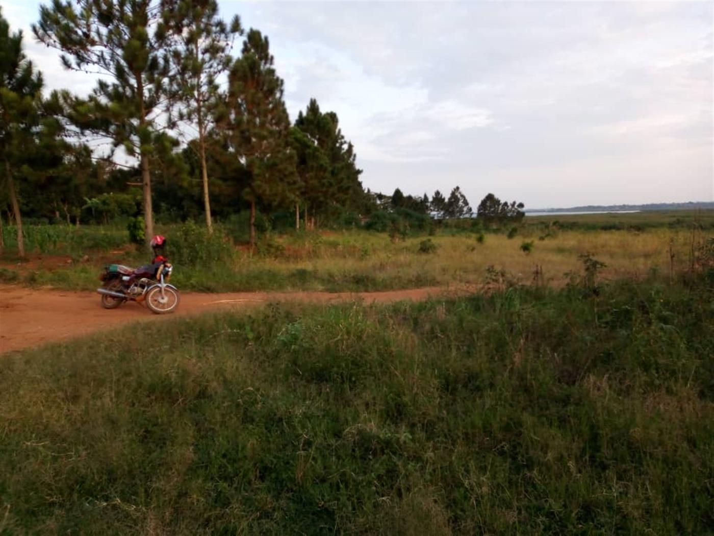 Residential Land for sale in Kitoko Masaka